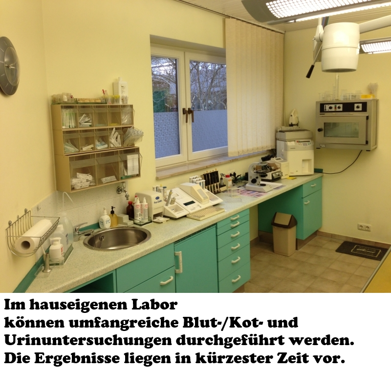 03_Labor3